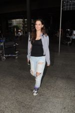 Evelyn Sharma Spotted At Airport on 29th Seprt 2017 (3)_59d21cc53852c.JPG