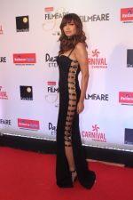 Esha Gupta at the Red Carpet Of Filmfare Glamour & Style Awards on 1st Dec 2017