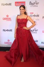 Kriti Kharbanda at the Red Carpet Of Filmfare Glamour & Style Awards on 1st Dec 2017