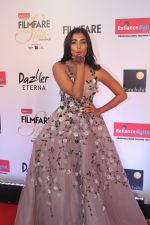 Pooja Hegde at the Red Carpet Of Filmfare Glamour & Style Awards on 1st Dec 2017 (239)_5a224962b7d99.JPG