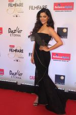 Saiyami Kher at the Red Carpet Of Filmfare Glamour & Style Awards on 1st Dec 2017 (88)_5a224a3965418.JPG