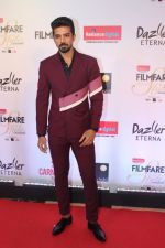 Saqib Saleem at the Red Carpet Of Filmfare Glamour & Style Awards on 1st Dec 2017