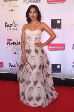 Sayani Gupta at the Red Carpet Of Filmfare Glamour & Style Awards on 1st Dec 2017 (45)_5a224a45ebd3d.JPG