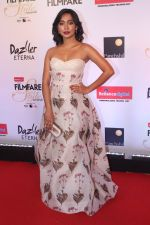 Sayani Gupta at the Red Carpet Of Filmfare Glamour & Style Awards on 1st Dec 2017 (48)_5a224a4a90db4.JPG