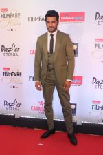 Sharad Kelkar at the Red Carpet Of Filmfare Glamour & Style Awards on 1st Dec 2017 (42)_5a224a58eecf5.JPG