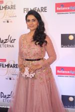 Sonali Kulkarni at the Red Carpet Of Filmfare Glamour & Style Awards on 1st Dec 2017 (52)_5a224a936687e.JPG