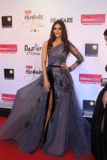 Vaani Kapoor at the Red Carpet Of Filmfare Glamour & Style Awards on 1st Dec 2017 (109)_5a224afd998de.JPG