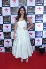 Aahana Kumra at the Red Carpet of Star Screen Awards in Mumbai on 3rd Dec 2017 (5)_5a24ccee9cccb.JPG