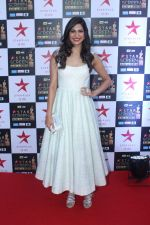 Aahana Kumra at the Red Carpet of Star Screen Awards in Mumbai on 3rd Dec 2017 (6)_5a24ccef35d8d.JPG