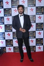 Irrfan Khan at the Red Carpet of Star Screen Awards in Mumbai on 3rd Dec 2017 (228)_5a24cea641945.JPG
