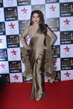 Madhuri Dixit at the Red Carpet of Star Screen Awards in Mumbai on 3rd Dec 2017 (84)_5a24ced0b2376.JPG