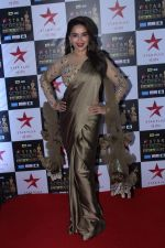 Madhuri Dixit at the Red Carpet of Star Screen Awards in Mumbai on 3rd Dec 2017 (86)_5a24ced1de56f.JPG