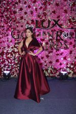 Bhumi Pednekar at the Red Carpet Of Lux Golden Rose Awards 2017 on 10th Dec 2017 (56)_5a2e0d936ec8f.JPG
