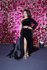 Madhuri Dixit at the Red Carpet Of Lux Golden Rose Awards 2017 on 10th Dec 2017 (76)_5a2e0ee82ace6.JPG