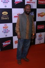 Ketan Mehta at Orange Carpet Of Nickelodeon Kids Choice Awards 2017 on 15th Dc 2017 (11)_5a3523709cb8c.JPG