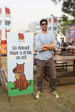 Dino Morea At India_s Biggest Pet Festival on 16th Dec 2017 (51)_5a3616d4f0fda.JPG