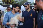 Dino Morea, Aditya Thackeray At Pet Fed Festival on 17th Dec 2017 (54)_5a37687f9f549.JPG
