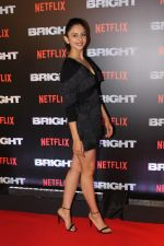 Rakul Preet Singh At the Red Carpet Of Netflix Original Bright on 18th Dec 2017 (10)_5a38c26fd175f.JPG