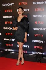 Rakul Preet Singh At the Red Carpet Of Netflix Original Bright on 18th Dec 2017 (11)_5a38c270655db.JPG