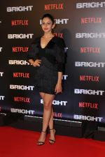 Rakul Preet Singh At the Red Carpet Of Netflix Original Bright on 18th Dec 2017 (12)_5a38c270ed317.JPG