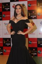 Bhumi Pednekar at the Red Carpet Event Of Zee Cine Awards 2018 on 19th Dec 2017 (318)_5a3a0bc31212f.JPG