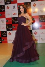 Elli Avram at the Red Carpet Event Of Zee Cine Awards 2018 on 19th Dec 2017 (316)_5a3a0bf9bed7c.JPG