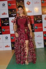 at the Red Carpet Event Of Zee Cine Awards 2018 on 19th Dec 2017 (140)_5a3a0bcf275aa.JPG