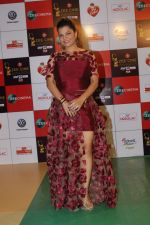 at the Red Carpet Event Of Zee Cine Awards 2018 on 19th Dec 2017 (141)_5a3a0bcfc09a2.JPG