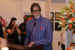 Amitabh Bachchan At Opening Preview Of Dilip De_s Art Exhibition on 26th Jan 2018 (38)_5a6c20f767407.JPG