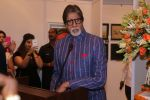 Amitabh Bachchan At Opening Preview Of Dilip De_s Art Exhibition on 26th Jan 2018 (39)_5a6c20f7eb33a.JPG