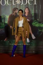 Banita Sandhu at the Trailer launch of film October in pvr juhu, mumbai on 12th March 2018 (10)_5aa77960e21c7.JPG