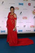 at Hello Hall of Fame Awards in st regis in mumbai on 12th March 2018 (8)_5aa7734529ed7.JPG
