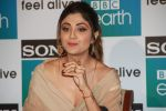 Shilpa Shetty Kundra at Sony BBC Earth, channels 1st anniversary celebration on 25th March 2018 (37)_5abb44a126505.JPG