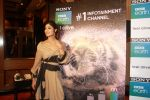 Shilpa Shetty Kundra at Sony BBC Earth, channels 1st anniversary celebration on 25th March 2018 (54)_5abb44c203b3b.JPG