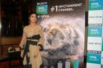 Shilpa Shetty Kundra at Sony BBC Earth, channels 1st anniversary celebration on 25th March 2018 (55)_5abb44c3d47aa.JPG