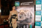 Shilpa Shetty Kundra at Sony BBC Earth, channels 1st anniversary celebration on 25th March 2018 (56)_5abb44c59bf9c.JPG