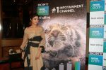Shilpa Shetty Kundra at Sony BBC Earth, channels 1st anniversary celebration on 25th March 2018 (57)_5abb44c78c1db.JPG