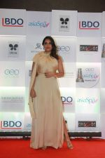 Richa Chadda at 11th Geospa Asiaspa India Awards 2018 on 24th April 2018 (15)_5ae095bd3dcc2.jpg