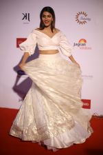 at the Red Carpet Of 16th Dada Saheb Phalke Film Foundation Awards on 29th April 2018 (12)_5ae80a9eea293.JPG