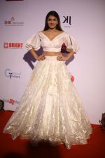 at the Red Carpet Of 16th Dada Saheb Phalke Film Foundation Awards on 29th April 2018 (6)_5ae80a8eb3d91.JPG