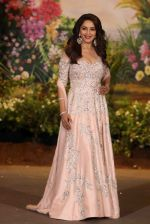 Madhuri Dixit at Sonam Kapoor and Anand Ahuja_s Wedding Reception on 8th May 2018 (271)_5af440e68c361.JPG