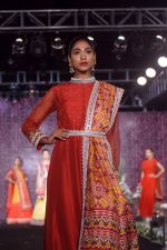 Model walk The Ramp at The Wedding Junction Show on 26th Oct 2018 (207)_5bd459645de3a.JPG