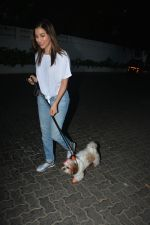 Sophie Choudry spotted at palli hill bandra on 11th Nov 2018 (1)_5bea705e9a5a1.JPG