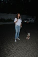Sophie Choudry spotted at palli hill bandra on 11th Nov 2018 (4)_5bea70706bfd4.JPG