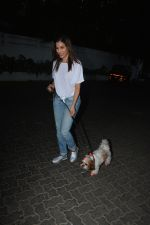 Sophie Choudry spotted at palli hill bandra on 11th Nov 2018 (8)_5bea708f00beb.JPG