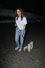 Sophie Choudry spotted at palli hill bandra on 11th Nov 2018 (9)_5bea709399c9c.JPG