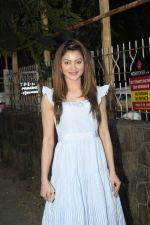 Urvashi Rautela Spotted at juhu on 14th Nov 2018 (12)_5bed153fb432e.JPG