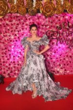 Taapsee Pannu at the Red Carpet of Lux Golden Rose Awards 2018 on 18th Nov 2018 (40)_5bf3a974b22e1.jpg
