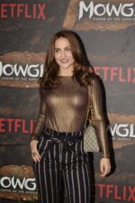 Elli Avram at Mowgli world premiere in Yashraj studios, Andheri on 26th Nov 2018 (50)_5bfcee30adae2.JPG
