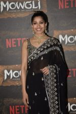 Freida Pinto at Mowgli world premiere in Yashraj studios, Andheri on 26th Nov 2018 (83)_5bfcee58a3595.JPG